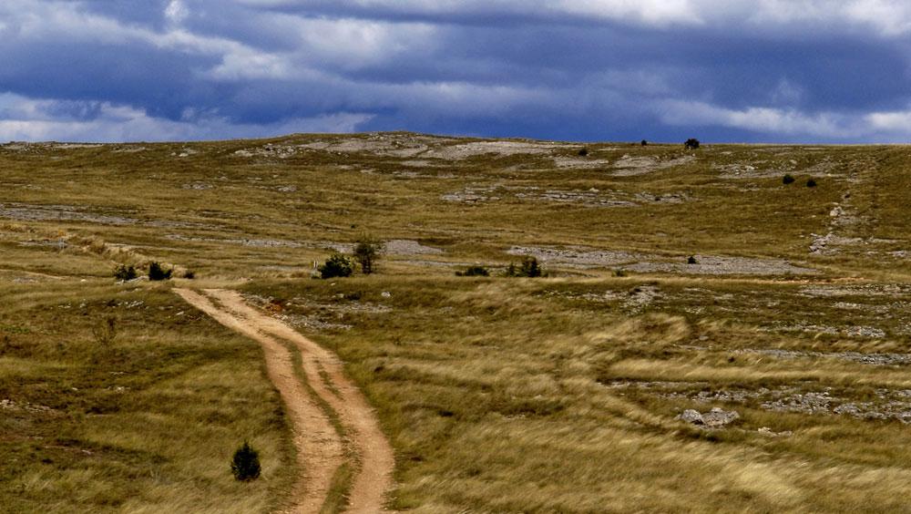Larzac的喀斯石灰岩高原